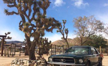 En ce 4 juillet, une Ford Mustang 1967 pas pour les puristes